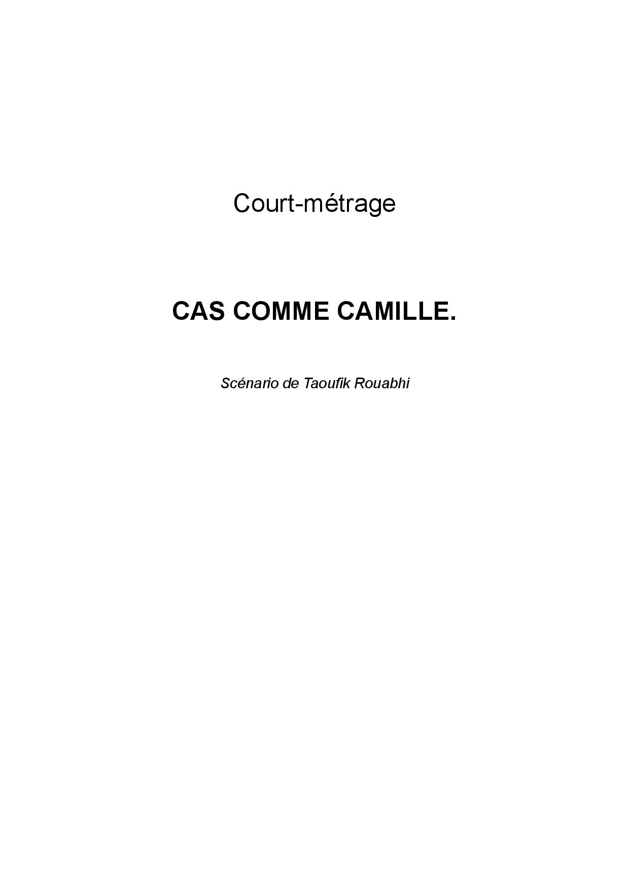Cas comme Camille-page-001